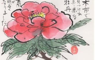 大谷先生 水墨画と絵手紙