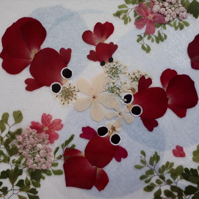0616押し花(経験者)